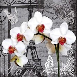 Салфетки за маса - Париж (Home Interior)